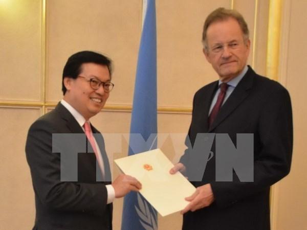 越南希望为联合国公共事务做出积极贡献 hinh anh 1