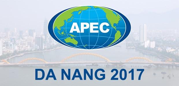 外交部发言人黎海平:APEC-SOM 1将通过许多重要内容 hinh anh 1