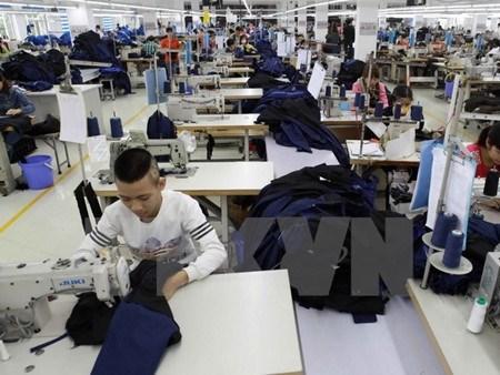 越南企业发展指数即将出炉 hinh anh 1