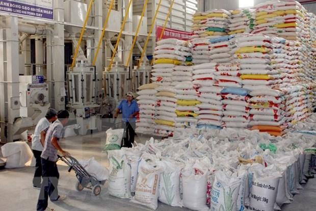 中国仍是越南大米最大出口市场 hinh anh 1