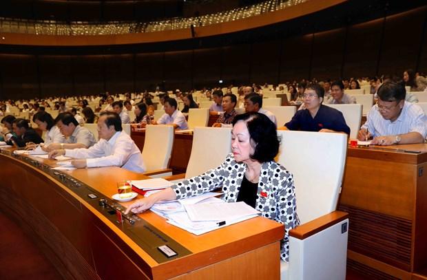 国会表决通过关于2019年法律法规制定计划决议草案 hinh anh 1