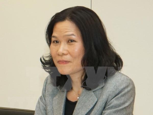 越南驻荷兰大使吴氏和主持海牙东盟委员会7月例行会议 hinh anh 1