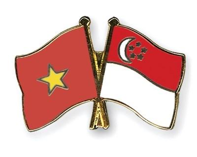 越南与新加坡合作中心运行原则获批 hinh anh 1