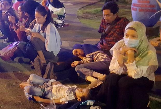 印尼西努沙登加拉省龙目岛地震后的惨状(组图) hinh anh 16