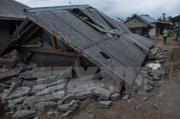 印尼西努沙登加拉省龙目岛地震后的惨状(组图) hinh anh 4
