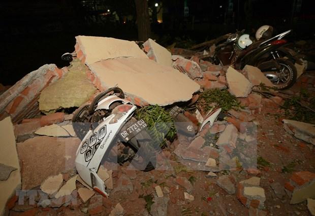 印尼西努沙登加拉省龙目岛地震后的惨状(组图) hinh anh 6