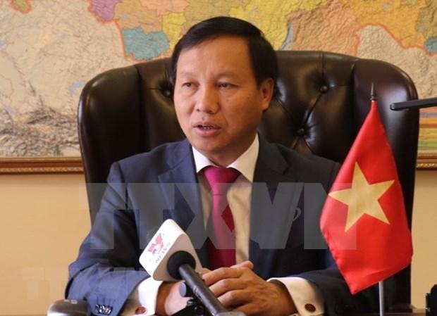 越南驻俄罗斯大使:为越俄全面战略伙伴关系注入新动力 hinh anh 1