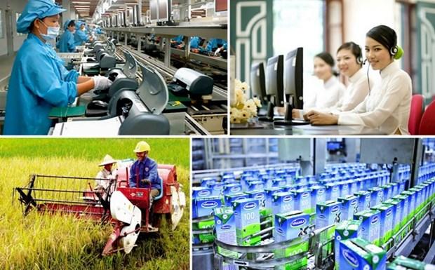越南国会主席阮生雄:首次普选的成功取决于民族的智慧和力量 hinh anh 3