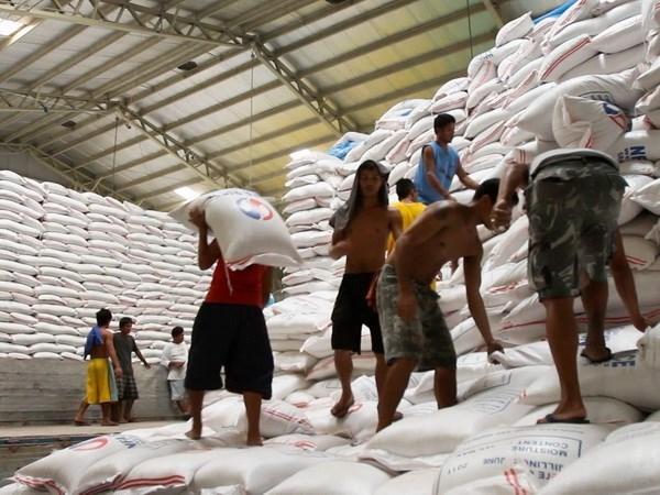 菲律宾计划从越南和泰国进口5万吨大米 hinh anh 1