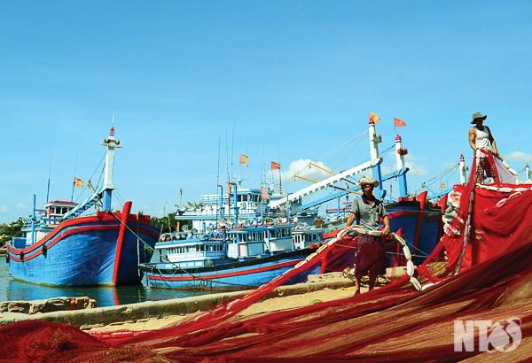政府的资金扶持协助渔民出海远航 hinh anh 1