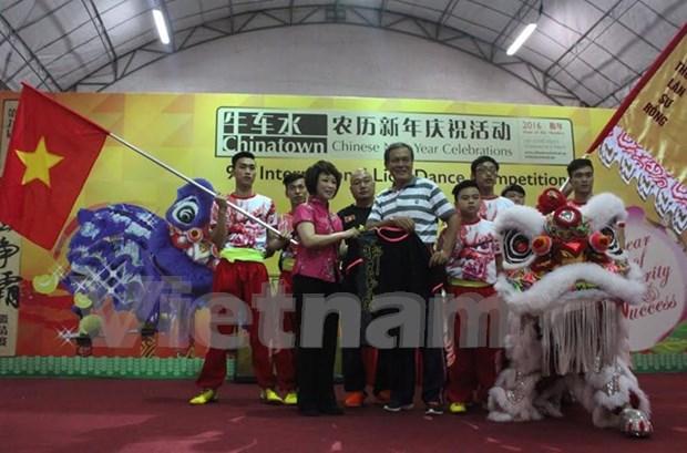 越南参加在新加坡举行的第九届狮王争霸赛 hinh anh 1