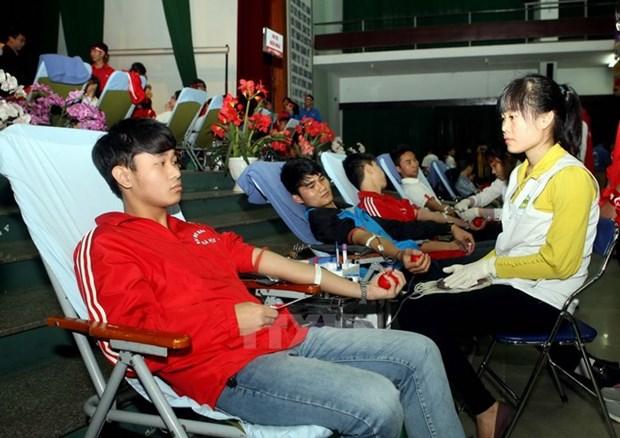 """越南岘港市1000多名青年参加""""红色周日献血节"""" hinh anh 1"""