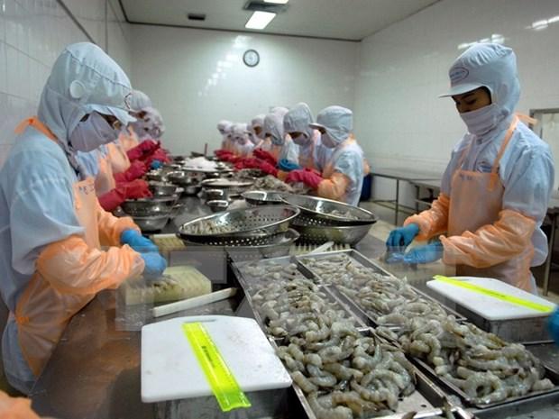 2016年初越南虾类产品出口有新突破 hinh anh 1