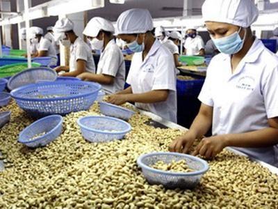 越南着力促进农产品贸易发展 hinh anh 1