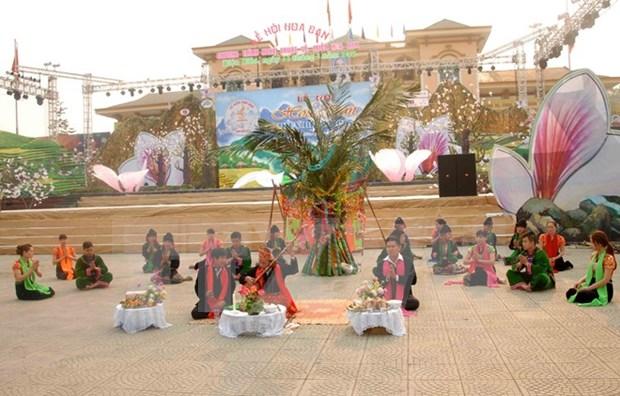 越南奠边省2016年羊蹄甲花节本月中旬举行 hinh anh 1