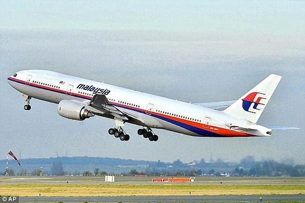 马来西亚发布MH370第二份中期报告 hinh anh 1