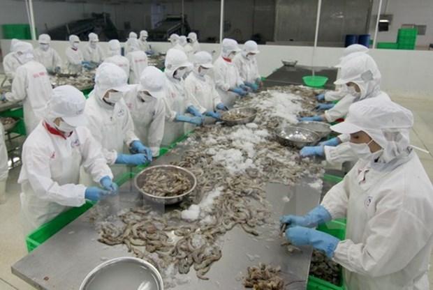 美国继续对越南虾类征收反倾销税 hinh anh 1