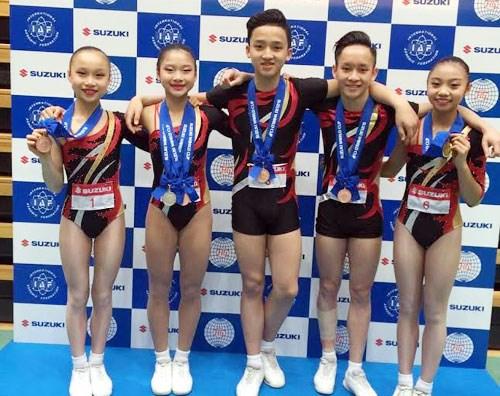2016健美操世界杯赛:越南队夺1金1银3铜 hinh anh 1