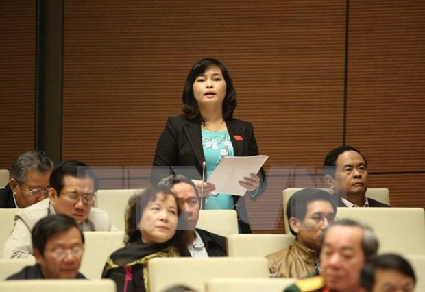 越南第十三届国会第十一次会议发表第十三号公报 hinh anh 1