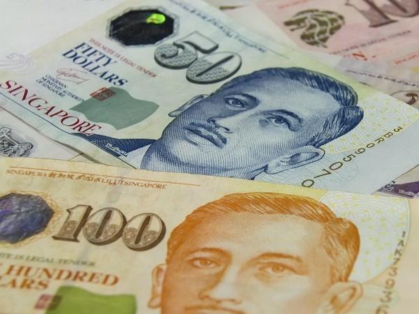 新加坡储蓄债券推出半年认购额达八亿元 hinh anh 1
