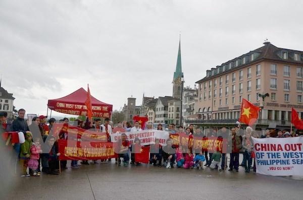 旅居瑞士越南人举行游行活动抗议中国在东海的行为 hinh anh 1
