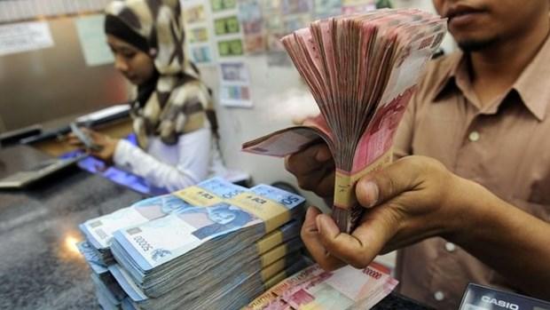 世行:2016年印尼经济或将增长5% hinh anh 1