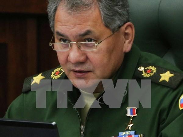 俄罗斯与东盟各国明确今后国防合作方向 hinh anh 1