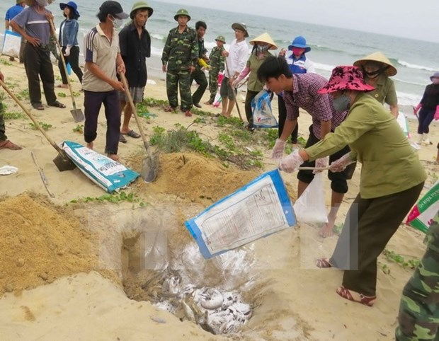 Vietcombank降低利率协助遭受大批鱼死亡现象影响的客户 hinh anh 1