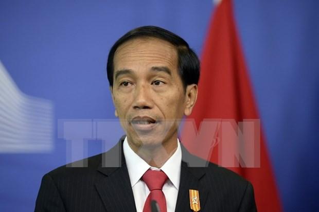 印尼总统佐科•维多多即将对韩国与俄罗斯进行访问 hinh anh 1