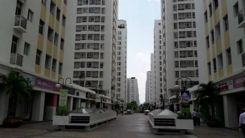 胡志明市强化寨卡病毒防控措施 hinh anh 1