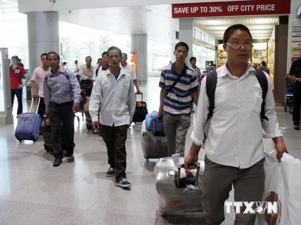 韩国恢复越南劳工入韩工作许可计划 hinh anh 1