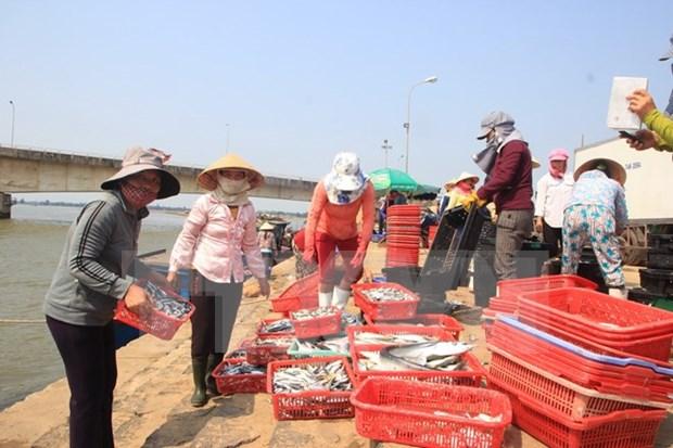 越南中部环境问题:请勿歪曲事实! hinh anh 1