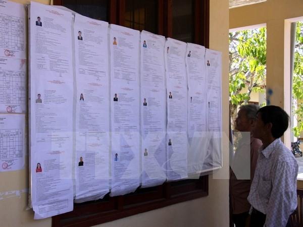 越南选举日临近:广义省李山岛县举行提前投票 hinh anh 1