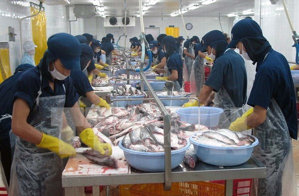 越南欢迎美国众议院通过取消对越南鲶鱼检验程序计划的决议 hinh anh 1