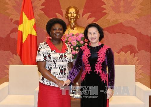 越南国会主席阮氏金银会见世行驻越首席代表维多利亚·克瓦 hinh anh 1
