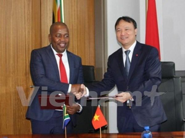 越南南非贸易混合委员会第三次会议在南非举行 hinh anh 1