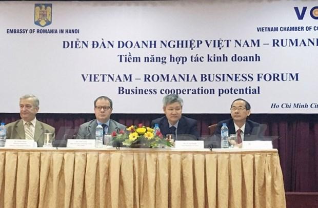 罗马尼亚鼓励越南企业加强对罗投资 hinh anh 1