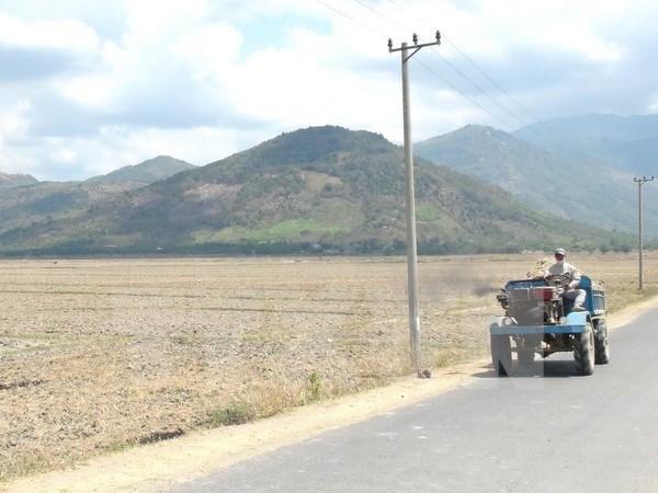 美国国际开发署继续协助越南应对气候变化 hinh anh 1