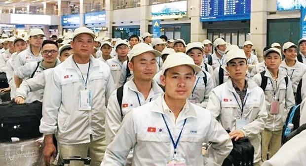 越南与韩国加强工会工作经验交流 hinh anh 1