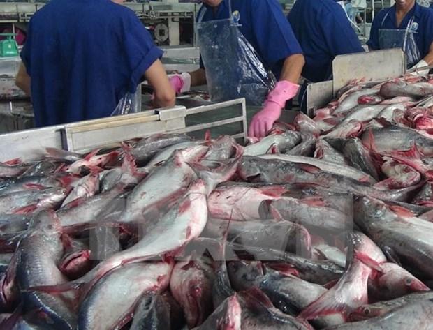 美国诸多众议员支持取消鲶鱼检验程序计划 hinh anh 1