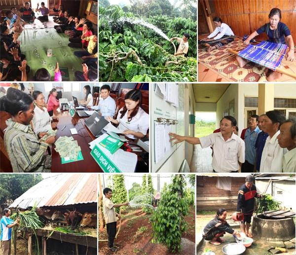 贷款优惠政策促使越南西原地区贫困率降低 hinh anh 1