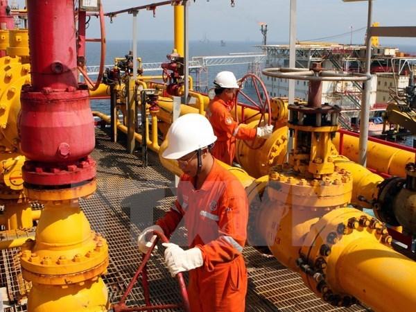 2016年上半年越南国家油气集团原油和凝析油销售量达近870万吨 hinh anh 1