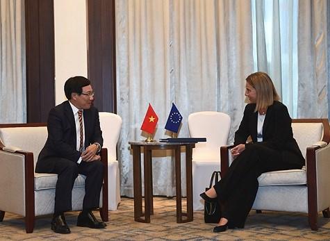 政府副总理兼外长范平明会见欧盟外交和安全政策高级代表莫盖里尼 hinh anh 1