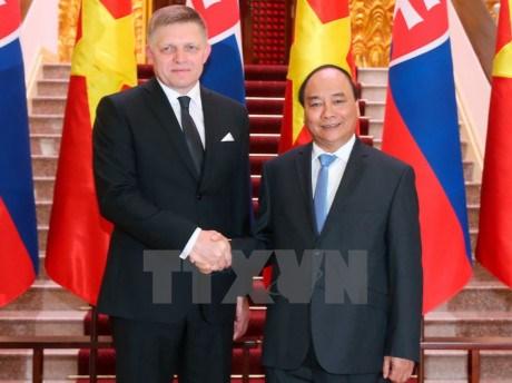 越南与斯洛伐克发表联合声明 强调加强多领域合作 hinh anh 1