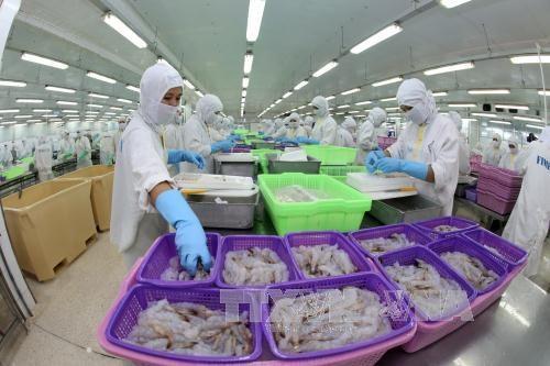 越南和美国就越南虾类产品反倾销问题达成协议 hinh anh 1