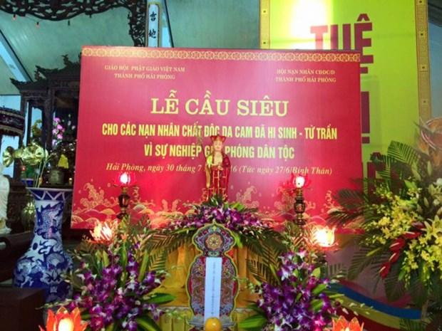 越南海防市为战争期间牺牲的橙毒剂受害者举行超度法会 hinh anh 1