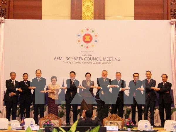 越南出席第19届东盟投资区理事会会议 hinh anh 1