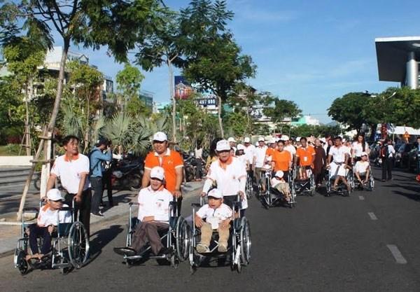 岘港市举行为橙剂受害者募捐步行活动 hinh anh 1