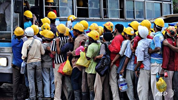 马来西亚逮捕400多名非法外劳 hinh anh 1