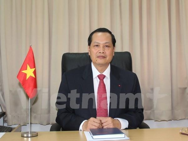 越南驻新加坡大使:越新两国经济有很强的互补性 hinh anh 1